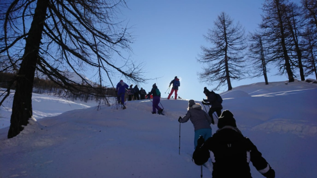 Private snowshoe tours