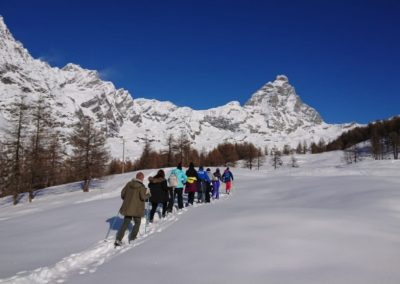 Collective snowshoe tours