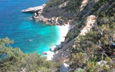SARDEGNA : il Selvaggio Blu con le guide del Cervino (7 gg  maggio-giugno-settembre-ottobre)